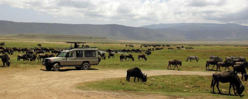 classic-safari-tanzania