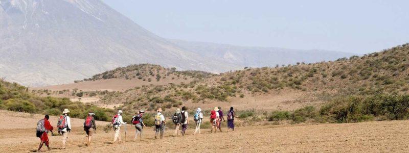 A-Walking-Safari-in-the-Maasai-Highlands-of-Ngorongoro