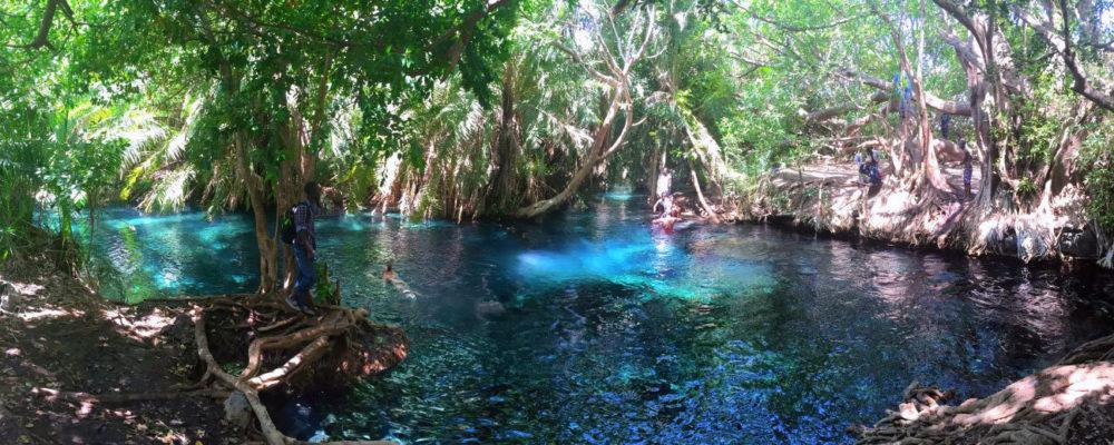 kikuletwa-hot-springs